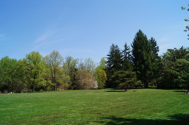 park, yard